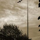 Spire of Dublin by mlphoto