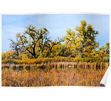 Cherry Creek Pond in Autumn  Poster