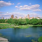 N.Y.C. 21 June 1998 by Priscilla Turner