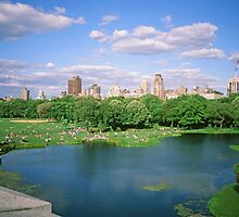 N.Y.C. 21, June 1998 by Priscilla Turner