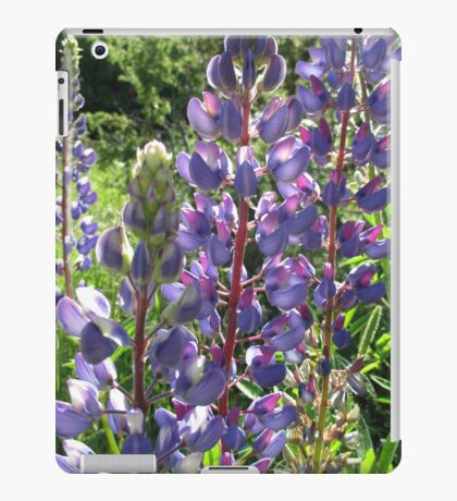 Late Afternoon Lupins iPad Case/Skin