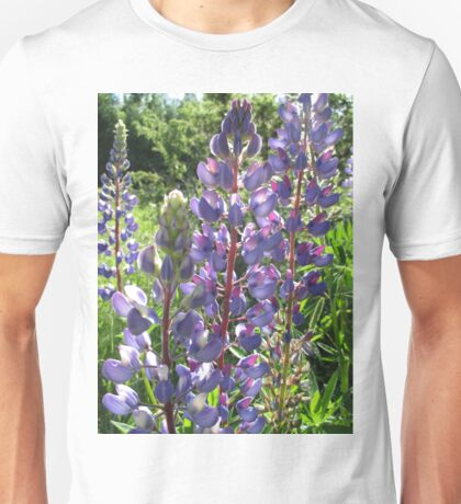 Late Afternoon Lupins Unisex T-Shirt