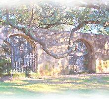 Alamo Arches by shutterbug941