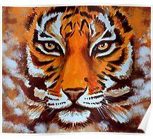 Tiger #75 Poster