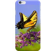 Two-tailed Swallowtail Butterfly iPhone Case/Skin