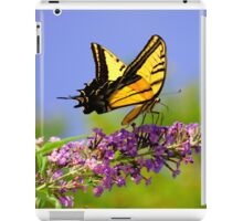 Two-tailed Swallowtail Butterfly iPad Case/Skin