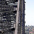 Climbing the Sydney Harbour Bridge, Australia. by johnrf
