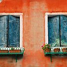 Windows in Murano by jojobob