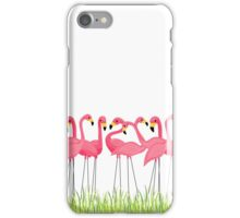 Pink Flamingos Illustration iPhone Case/Skin