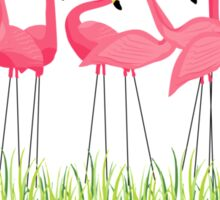 Pink Flamingos Illustration Sticker