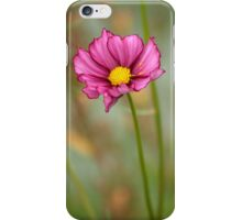 Summer Love Cosmos Flower iPhone Case/Skin