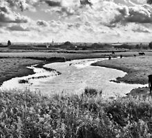 Ham Marshes by Geoff Carpenter