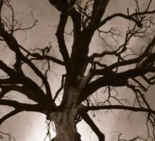 Spooky Tree Sticker