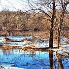 Winter Palette by Nadya Johnson
