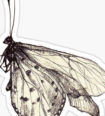 Butterfly drawing Sticker