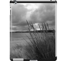 From the Dunes iPad Case/Skin