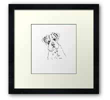 Pen and ink Jack Russell Framed Print