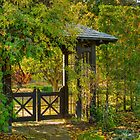 Woodland Gate at Parkwood by Marilyn Cornwell