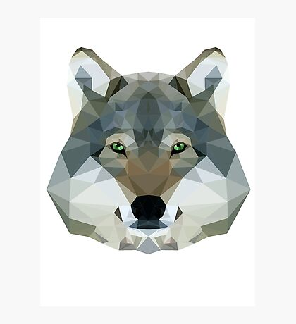 The Wolf of the North Photographic Print