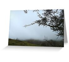 Shrouded in mist Greeting Card