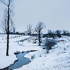 Winter White by jules572