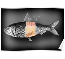 <º))))>< FISH WITH A TWIST PICTURE/CARD <º))))><  Poster