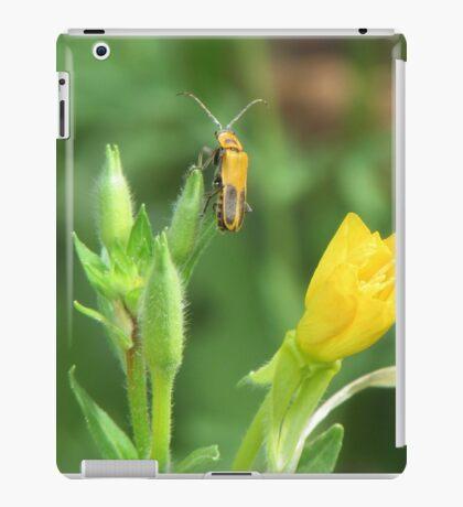 Soldier Beetle on Yellow Wildflowers iPad Case/Skin
