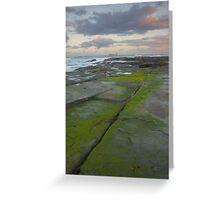 Evening light. Caloundra Headlands. Greeting Card