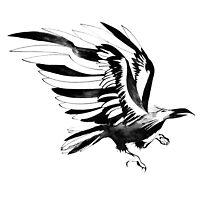 Black Raven by Julia Hromova