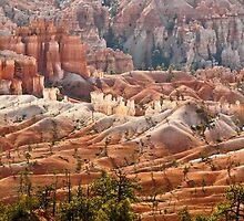 Ageless Sand Castles by Linda Sparks
