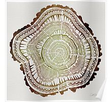 Tree Rings – Watercolor Poster