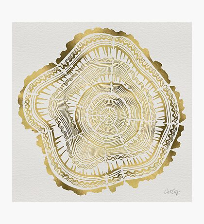 Gold Tree Rings Photographic Print