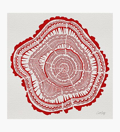 Red Tree Rings Photographic Print