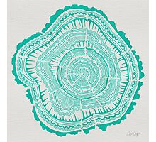 Turquoise Tree Rings Photographic Print