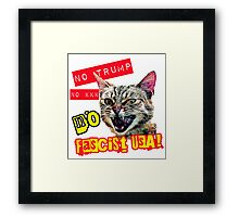 Pussies Against Trump No Fascist USA Framed Print