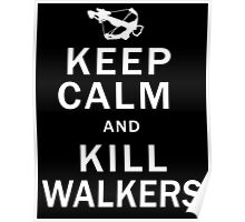 Keep Calm Kill Walkers Poster