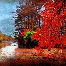Shades of Reds by Susan Werby