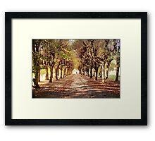 Path 2 Framed Print