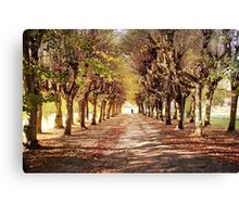 Path 2 Canvas Print