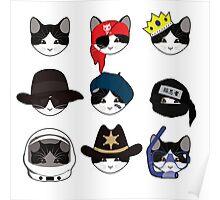 A Cat Living Nine Lives Poster