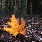 The last leaf by ienemien