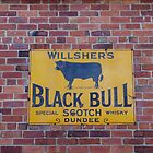 It's A Load Of Bull! by Francis Drake