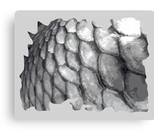 Fish scale, fishing scale design Canvas Print