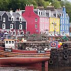 Tobermory harbour view by Christopher Cullen
