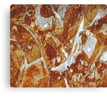 Marble Texture 4 Canvas Print