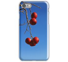 The Last Temptations iPhone Case/Skin