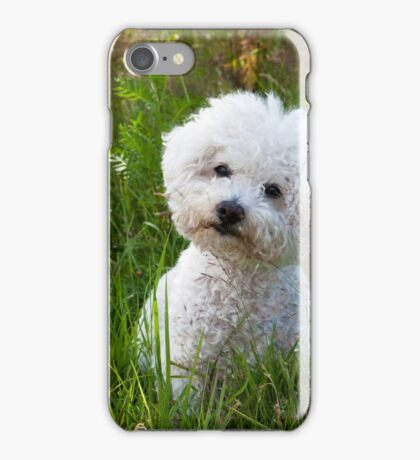 Little Cute White Dog iPhone Case/Skin