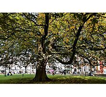 Cathedral Square ~ Exeter Photographic Print