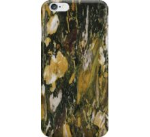 Marble Texture 13  iPhone Case/Skin