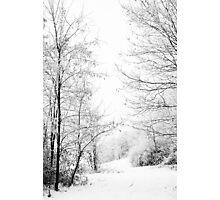Winter wonderland black and white photography Photographic Print